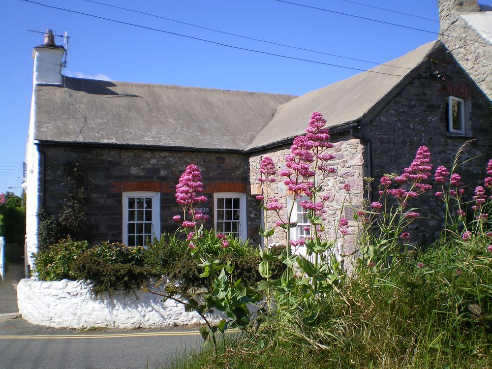tn_High res exterior 1 Yewdale Cottage St Davids self catering holiday.JPG